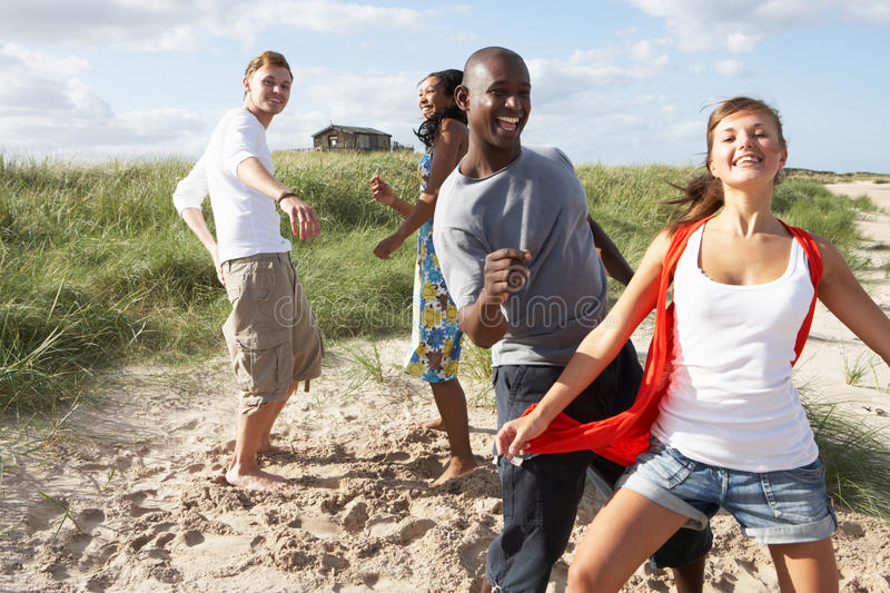 Young People Having Fun Dancing On Beach. Group Of Young People Having Fun Dancing On Beach Together stock photography