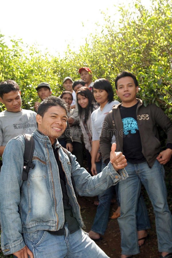 Young people at plantation royalty free stock image