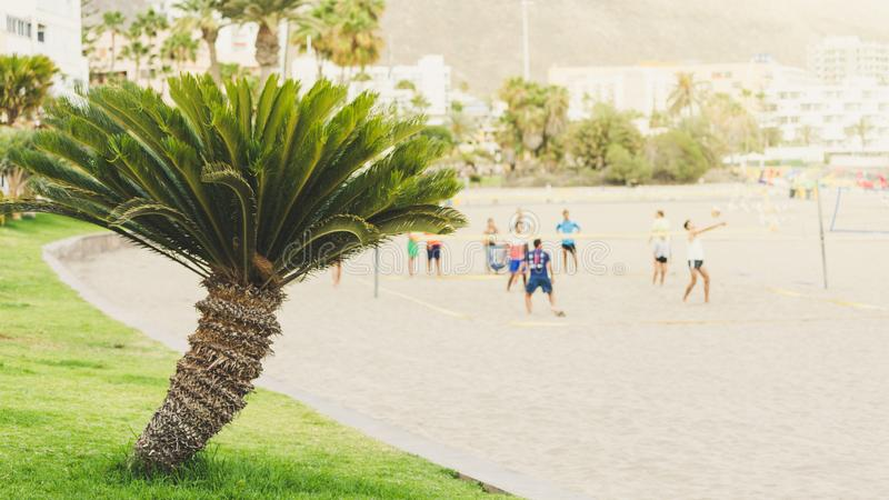 Young people plays on volleyball, defocused photography style.  stock photos