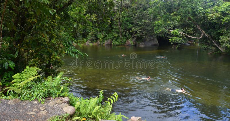 Young people swim in Babinda Boulders in Queensland Australia. CAIRNS, AUS - APR 21 2016:Young people swim in Babinda Boulders an iconic Cairn attraction and royalty free stock photography