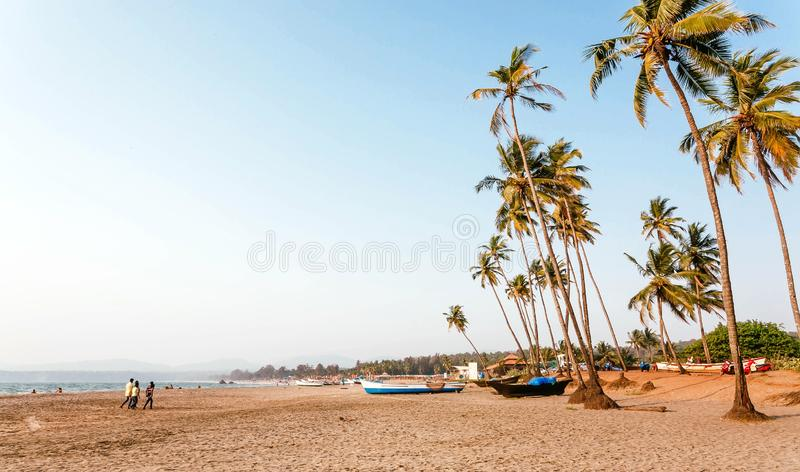 Young people walking on sandy beach with palm trees. Calmness of South India, Goa area stock image