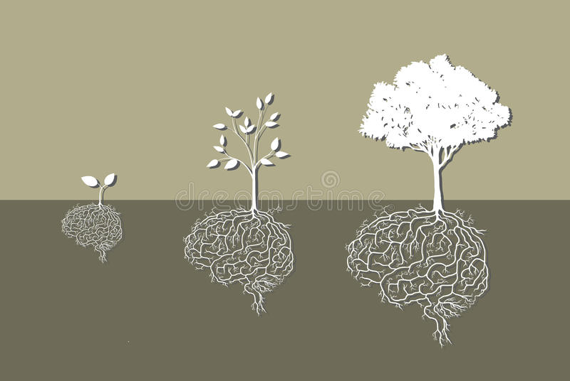 Young plant with brain root, vector illustration