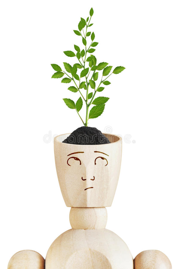 Young plant growing from human head. Environmental mind. Abstract image with a wooden puppet stock photography