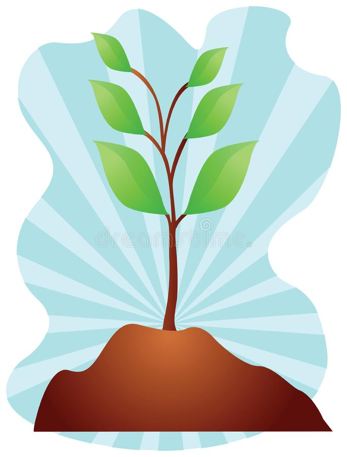 Young plant illustration stock images