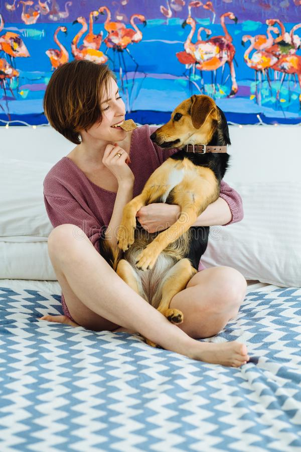 Young positive woman playing with pet dog at home interior. Funny female holding biscuit in mouth and hugging her cur dog. They stock image