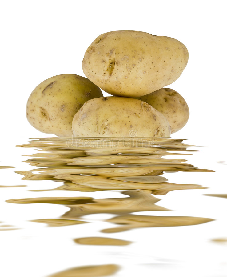 Young Potatoes In The Water Stock Images