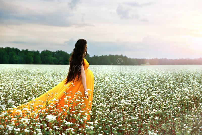 Young pregnant girl in a bright fiery dress walks on a flowering field of buckwheat royalty free stock image