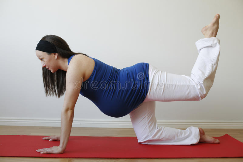 Young pregnant woman doing leg muscle exercise. stock images