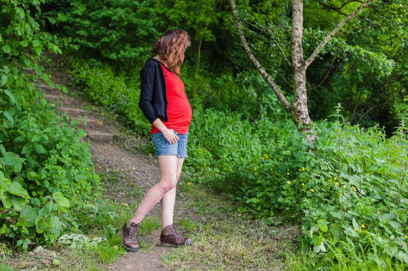 Young pregnant woman in the woods. A young pregnant woman is standing in the woods on a sunny summer day royalty free stock images