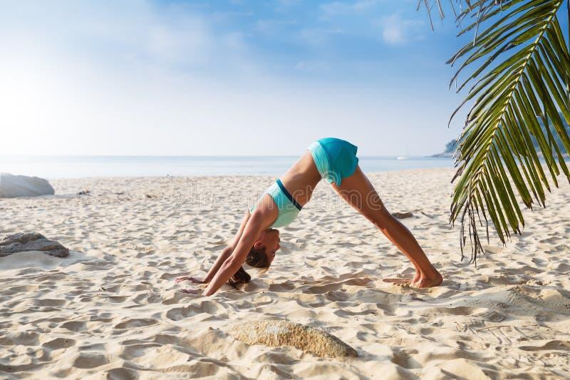 Young pretty slim brunette woman practise yoga pose tropical beach. Young pretty slim brunette woman practise Downward facing dog pose Adho Mukha Svanasana yoga royalty free stock photography