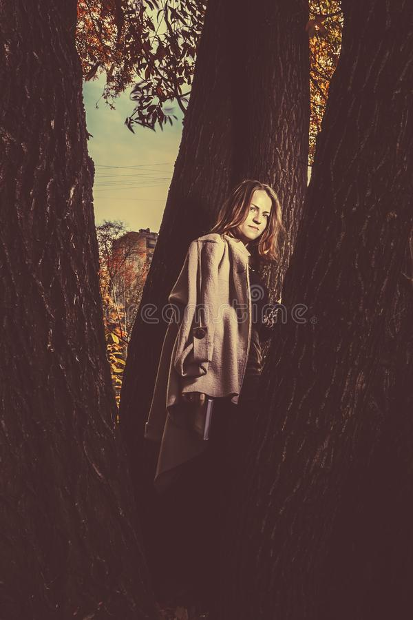 Young pretty woman at the autumn park among the trees. Girl posing in city park in autumn, she stands among three trees in stock photos