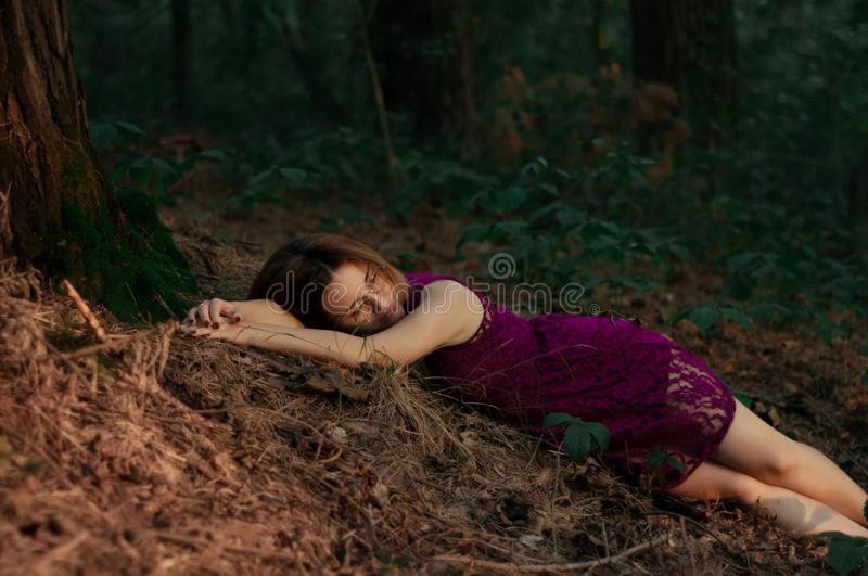 Young pretty woman resting near a tree in the forest. royalty free stock photos