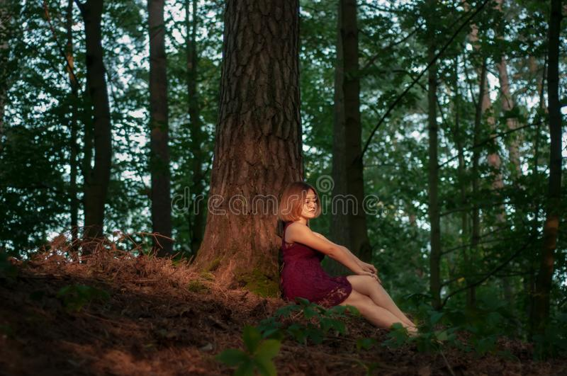 Young pretty woman resting near a tree in the forest. royalty free stock photography
