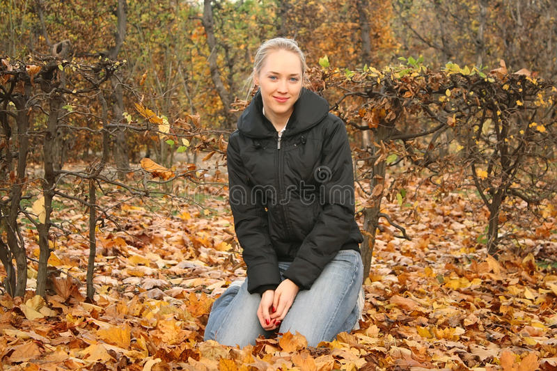 Young pretty woman sitting on the autumn leaves stock photography