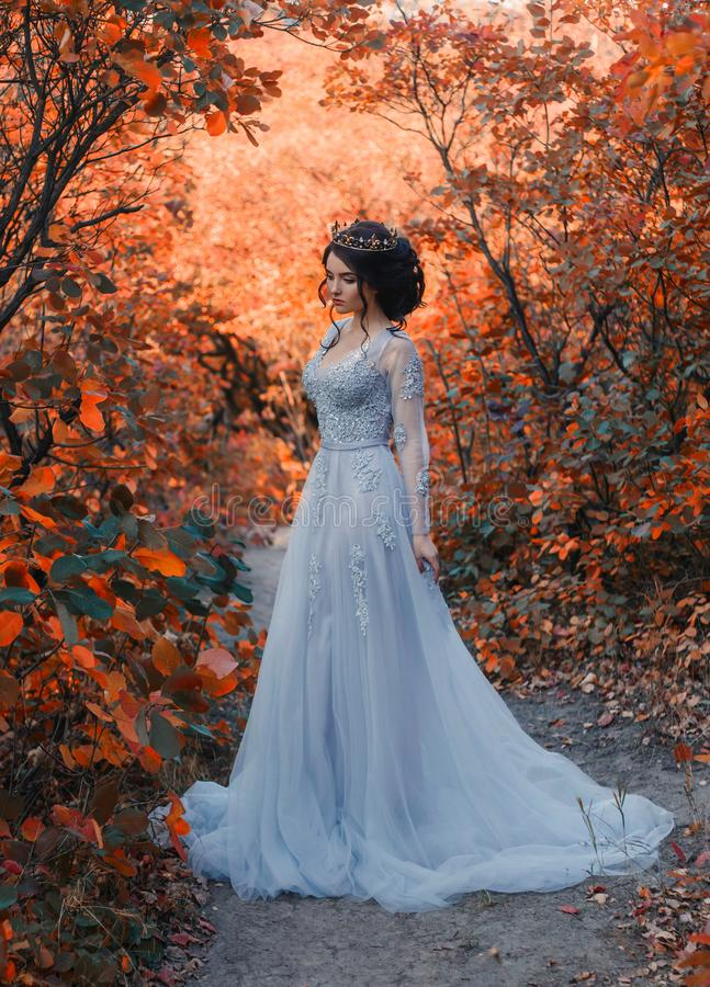 A young princess walks in golden autumn nature. A young princess walks in a beautiful blue dress. The background is bright, golden autumn nature. Artistic royalty free stock photo