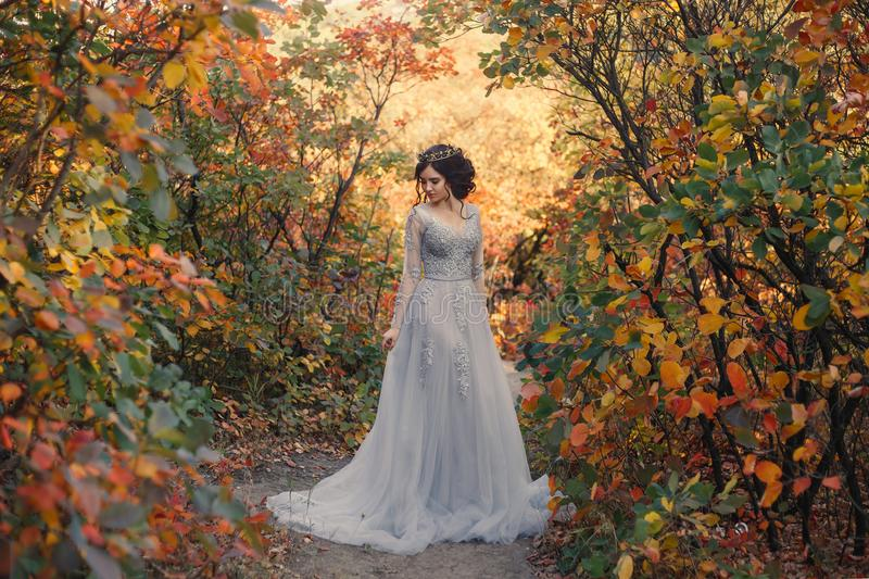 A young princess walks in golden autumn nature. A young princess walks in a beautiful silver dress. The background is bright, golden autumn nature. Artistic stock photos
