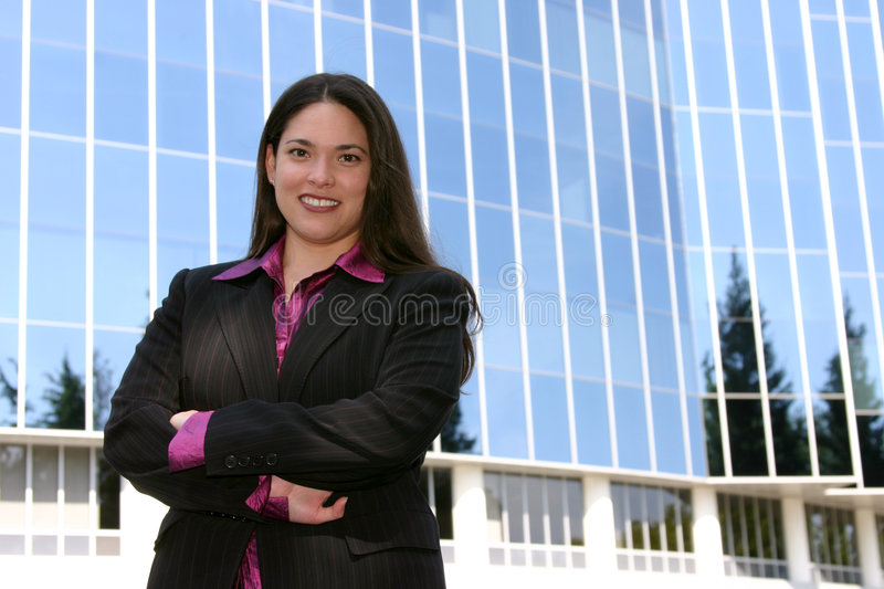 Download Young Professional stock image. Image of career, occupation - 102183