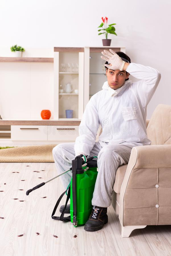 The young professional contractor doing pest control at flat royalty free stock photography