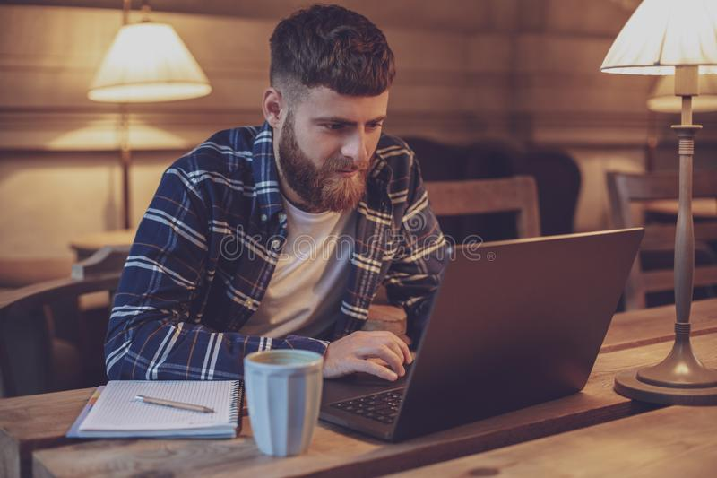 Young professional surfing the Internet on his laptop in a cafe royalty free stock photography