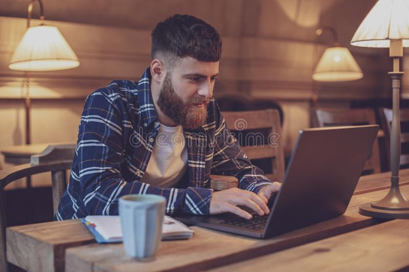 Young professional surfing the Internet on his laptop in a cafe royalty free stock photo