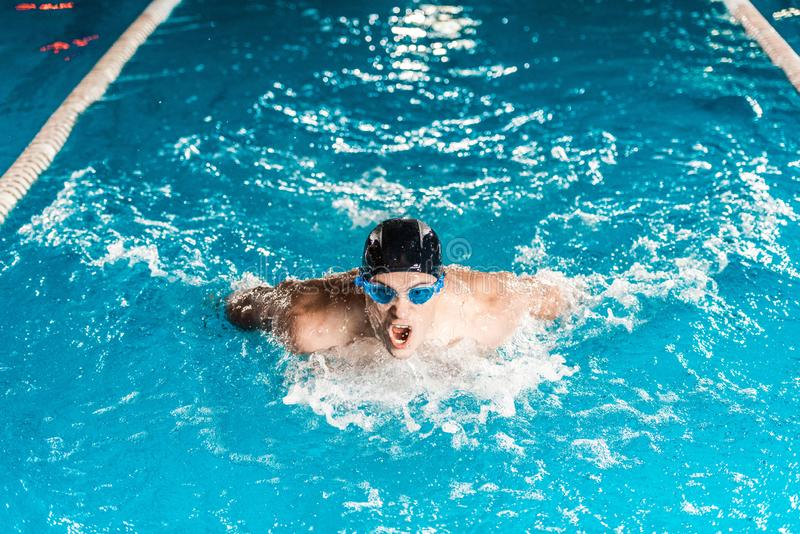 Young professional swimmer in competition swimming. Pool royalty free stock photography