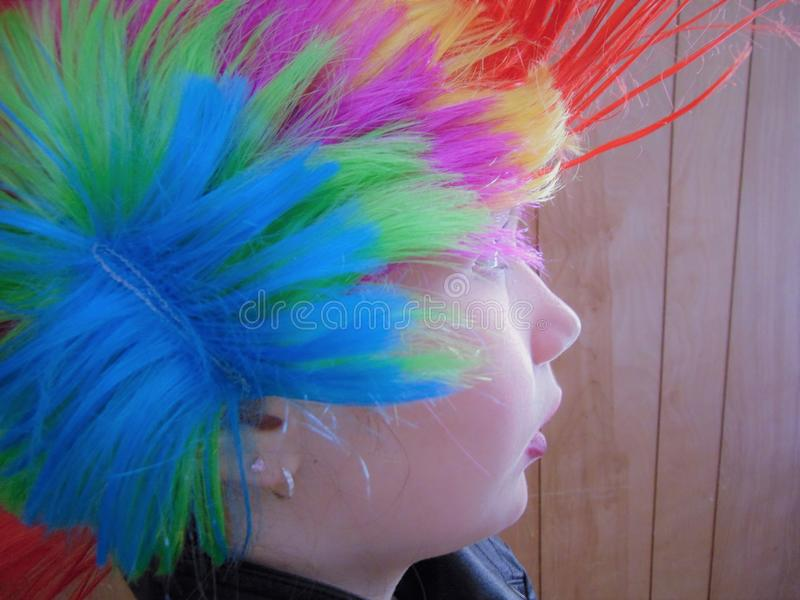 Young Punk Rocker Chick With Rainbow Mohawk stock photos