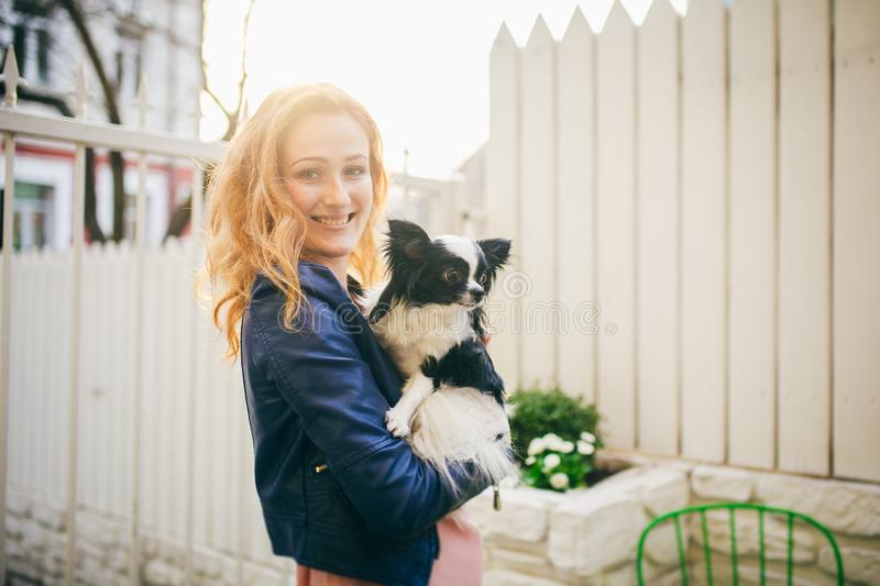 A young red-haired Caucasian woman holds a small funny dog in the arms of two colors of black and white chihuahua. Hugs and kisses royalty free stock photography