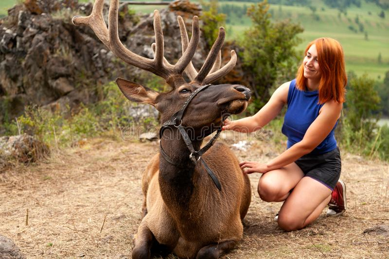A young red-haired woman with deer maral royalty free stock images