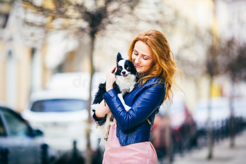 Young redhaired Caucasian woman with freckles on face holds and kisses, hugs, loves black and white shaggy dog of Chihuahua breed. The girl dressed in blue stock image