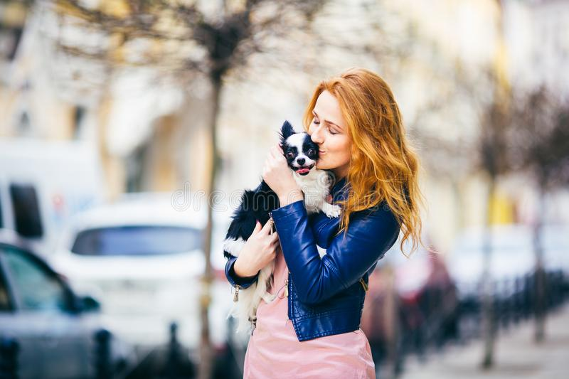 A young redhaired Caucasian woman with freckles holds and kisses, embracing black and white shaggy dog of Chihuahua breed. girl dr stock photo