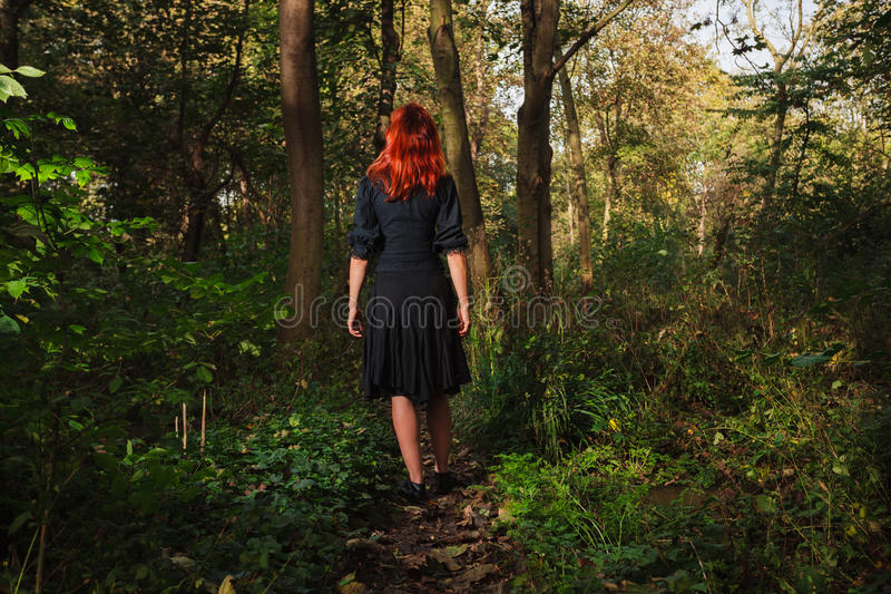 Young redhead woman in the woods stock images