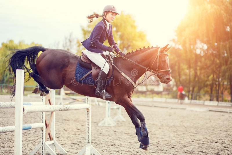 Young rider girl on horse show jumping competition. Young rider girl performing jump at horse show jumping competition. Equestrian sport background. Warm color stock image