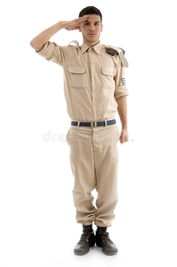 Free Young Saluting American Guard Royalty Free Stock Photos - 7360078