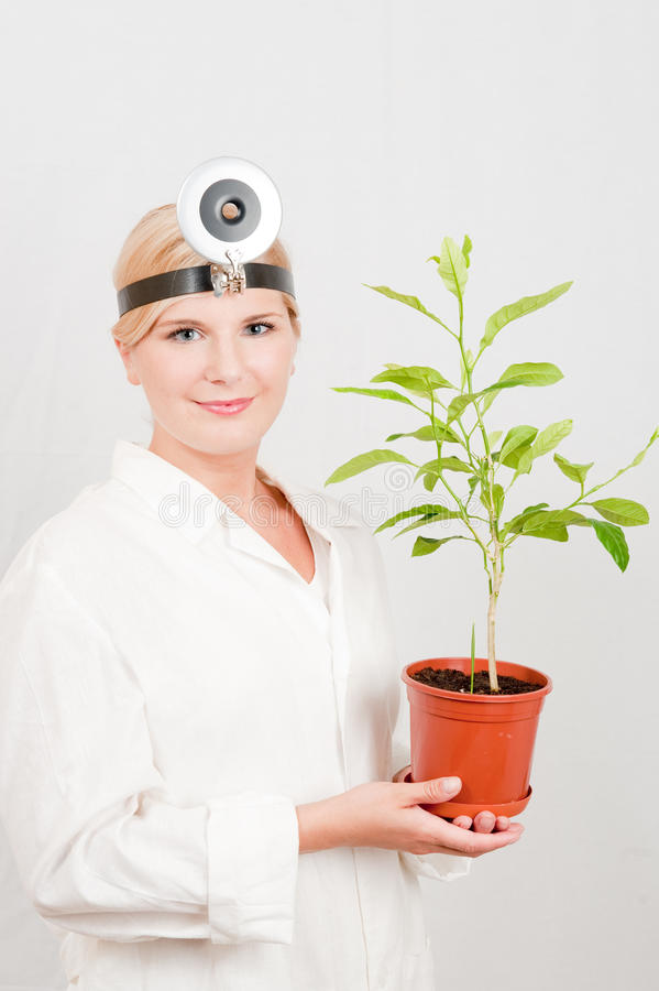 Free Young Scientist Botanic With Green Tree Royalty Free Stock Images - 11825419