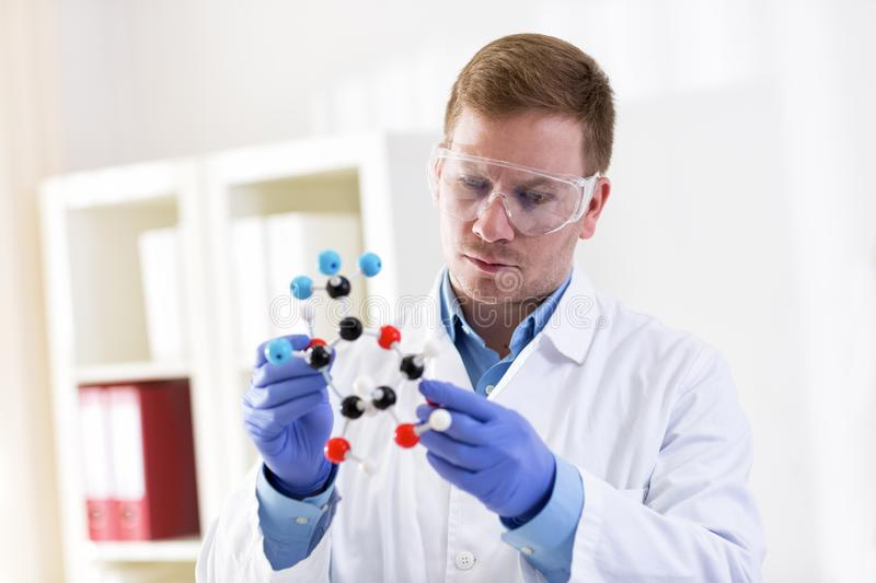 Young scientist holding molecular model stock images