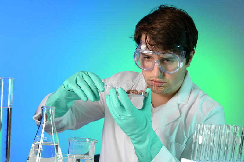Young Scientist Testing Meat stock photo