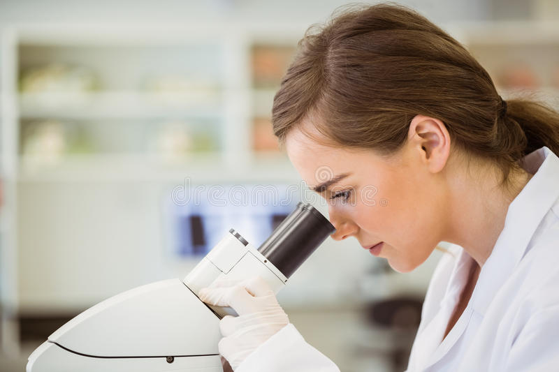 Young scientist working with microscope royalty free stock photo