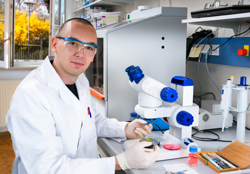 Download Young Scientist Works In The Laboratory Stock Photo - Image of mouse, instrumants: 21728482