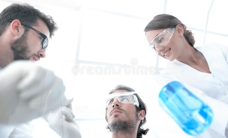 Group of students in the lab. Young scientists performing a reaction in the laboratory royalty free stock image