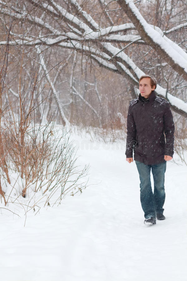 Young serious man in jeans walk in forest at winter royalty free stock photography