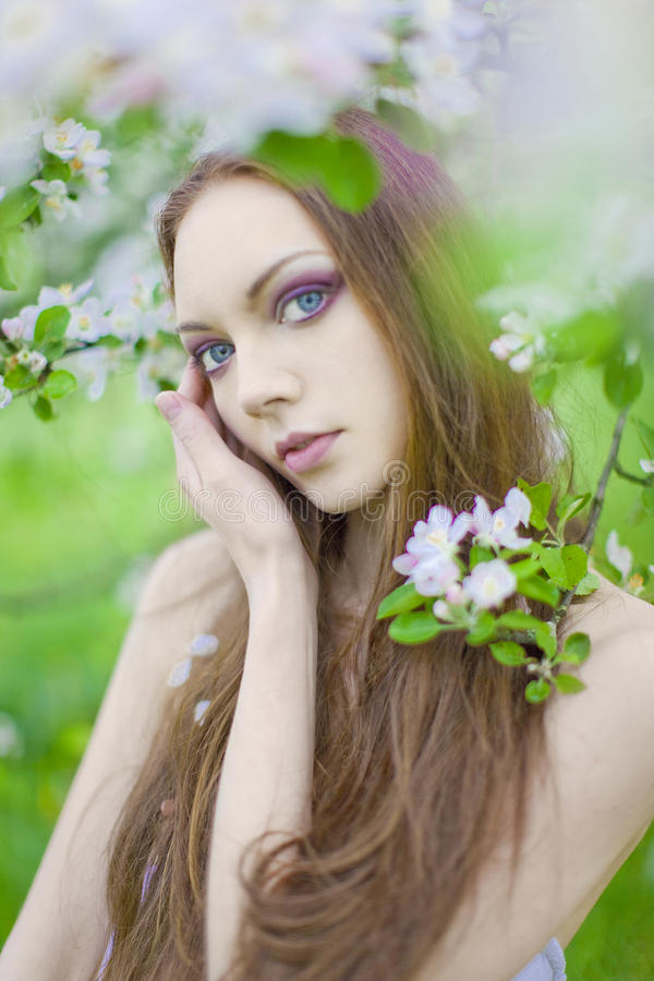 Download Young Girl In The Apple Orchard Stock Image - Image: 14954807
