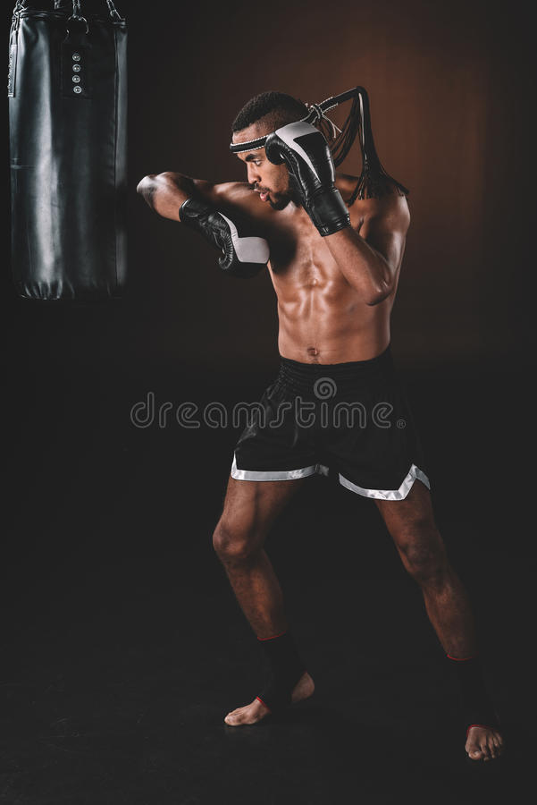 Young shirtless Muay thai fighter with boxing gloves exercising with punching bag stock photography