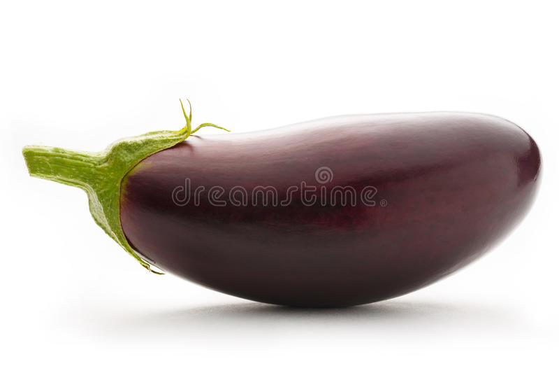 Young singe eggplant. On a white background royalty free stock images