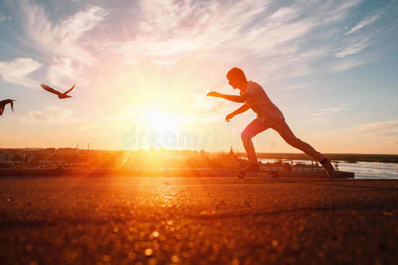 Young skaters training in the park in sunset. Birds. royalty free stock image