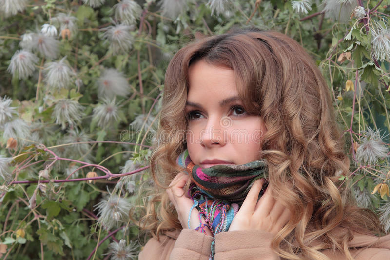 Young, smiling and pretty woman in the autumn park royalty free stock image