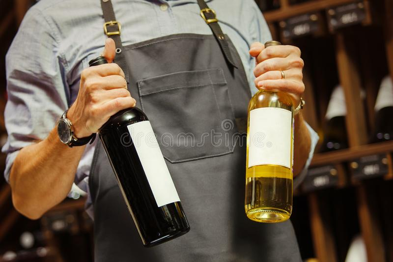 Young sommelier holding bottle of red wine in cellar royalty free stock photography