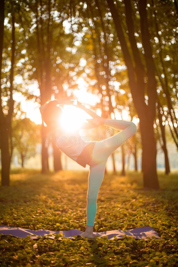 A young sports girl practices yoga in a quiet green forest in autumn at sunset, in a yoga asana pose. Meditation and oneness with. Nature royalty free stock image