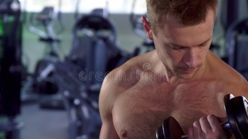 Man trains his bicepses. Young sportsman training his bicepses at the gym. Close up of caucasian male athlete doing alternate curls with dumbbells. Camera royalty free stock photo