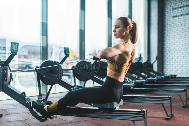 Young sportswoman doing exercise on rowing machine. In sports center royalty free stock photo