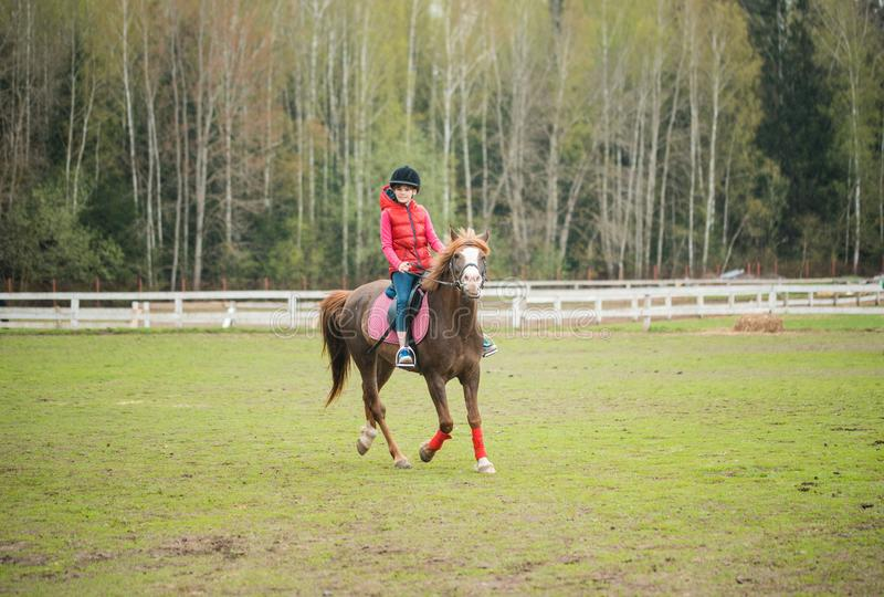 Young sportswoman riding horse in equestrian show jumps competition. Teenage girl ride a horse royalty free stock photos